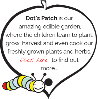 Dot's Patch is our amazing edible garden, where the children learn to plant, grow, harvest and even cook our freshly grown plants and herbs. Click here to find out more...